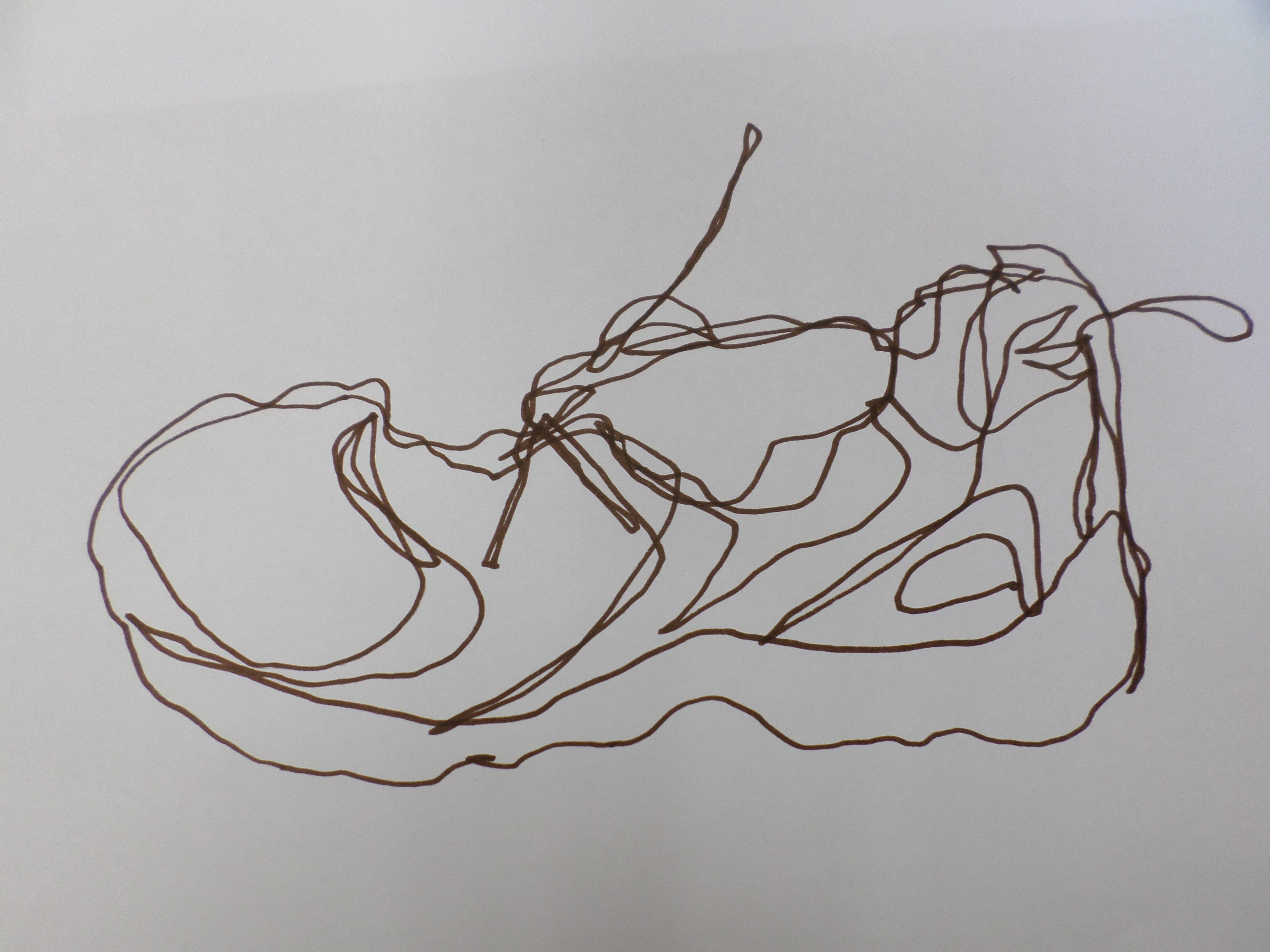 Contour Line Drawing In Art : Contour drawing artmanews